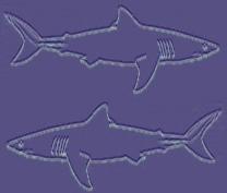 Haifischbecken classic